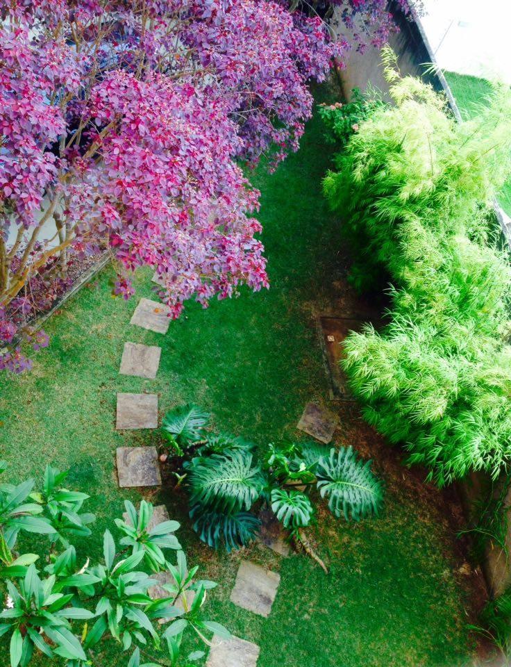 jardim geral
