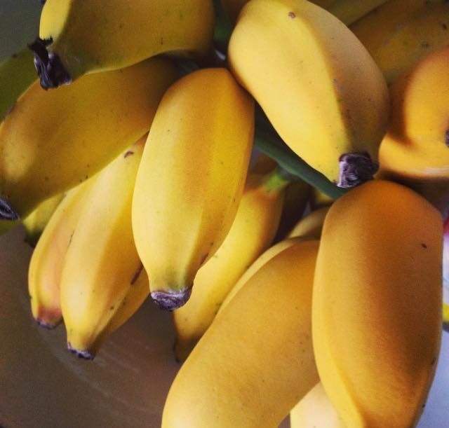 Eu amo banana!
